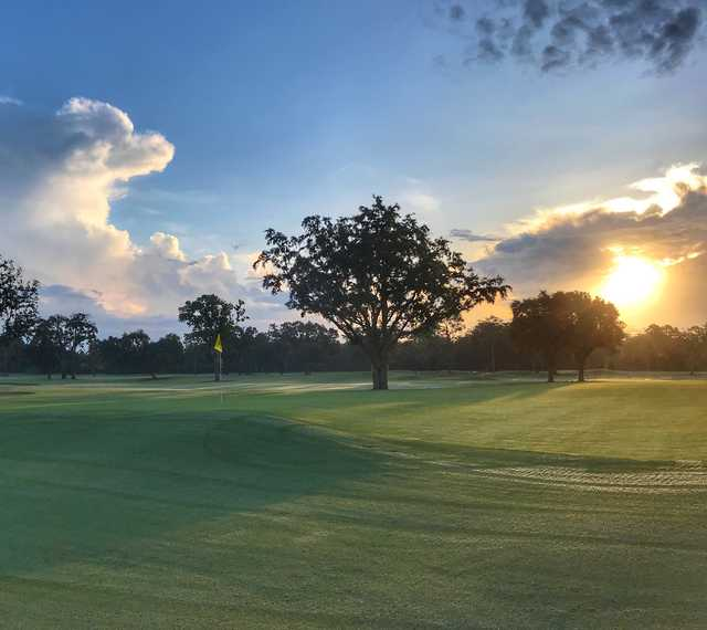 View of a green at The Country Club of Orlando