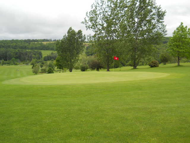 A view of green at Grandview Farms Golf Course