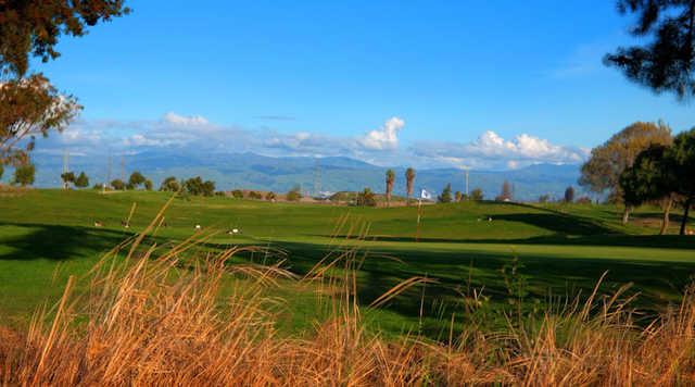 A view of green at Moffett Field Golf Club