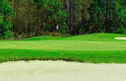 A view of a green at Magnolia Plantation Golf Club