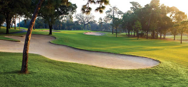 A view of the 1st green at Copperhead Course from Innisbrook Resort & Golf Club.