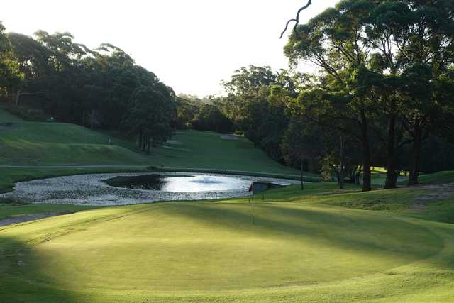 A view of the 3rd green at Chatswood Golf Club