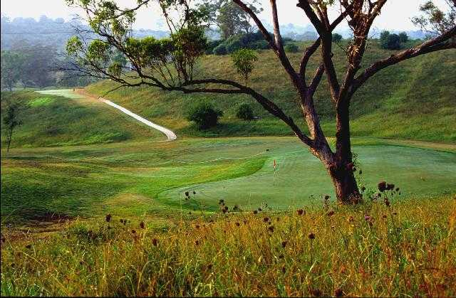 A view of the 17th green at Macarthur Grange Country Club