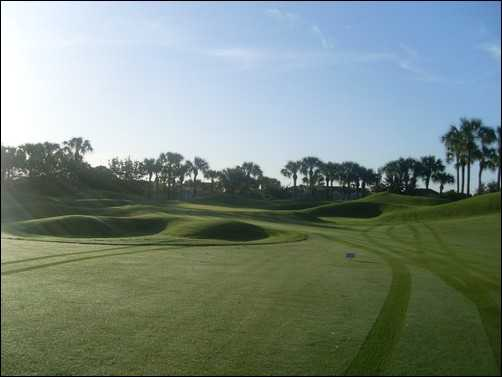A view from fairway #1 at Pelican Marsh Golf Club