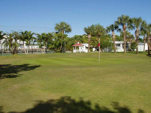 A view of green at Silver Lakes RV Resort & Golf Club.