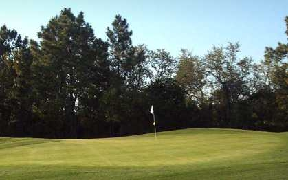 A view of green at Lake Diamond Golf & Country Club