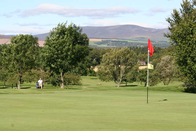 A view of green at Brechin Golf and Squash Club