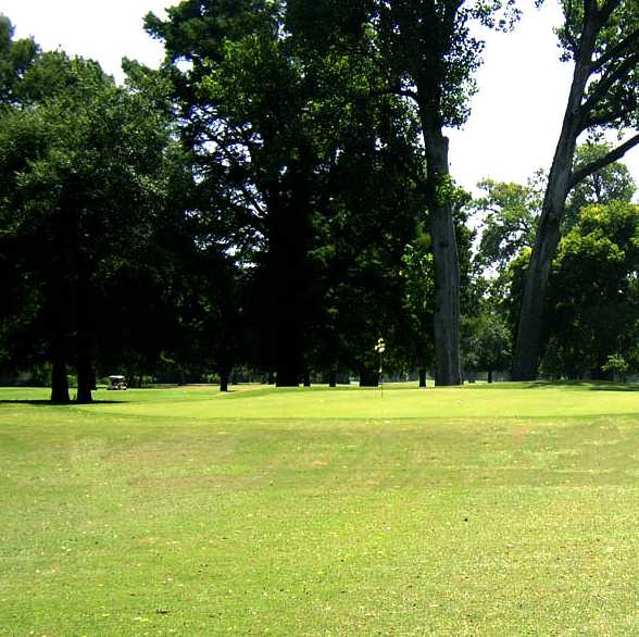 A view of green at Querbes Park Golf Course
