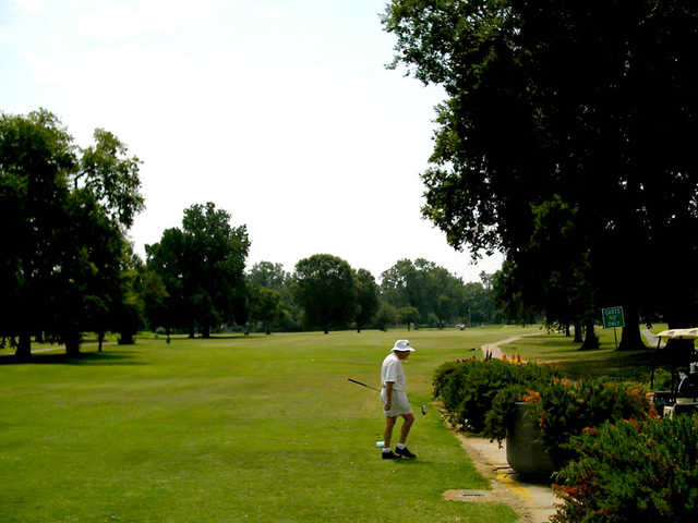 A view from Querbes Park Golf Course