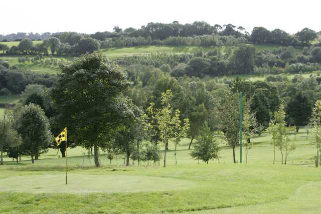 A view of green at Elfordleigh Hotel, Golf & Country Club