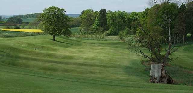 Looking down the undulating fairway on the Headlam Hall Golf Course