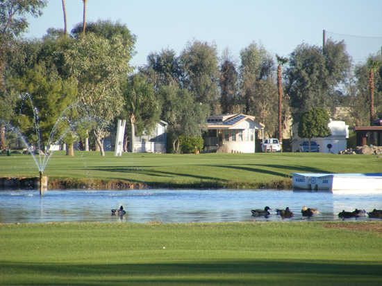 View of a green and pond at Desert Trail RV Resort & Golf Course