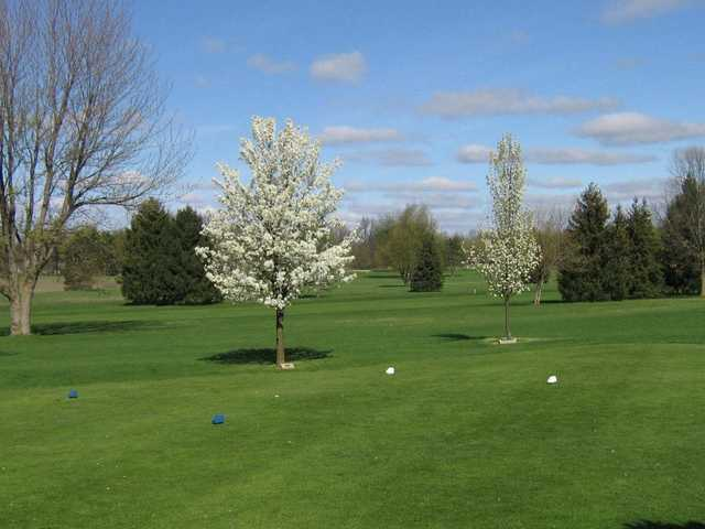 White and blue tees at Ridgeview Golf Course