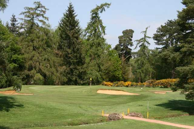 A view of the 6th green at Green Course from Frilford Heath Golf Club