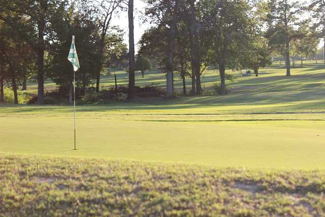 A sunny view of a green at Alpine Golf Club