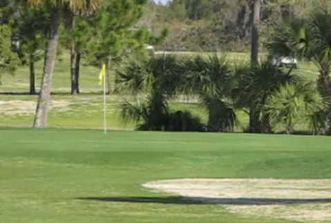 A view of a green at Tarpon Springs Golf Course