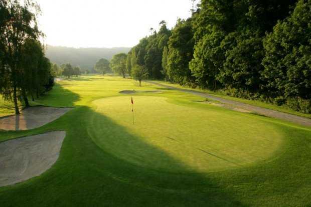 A view of green #4 at Woodenbridge Golf Club