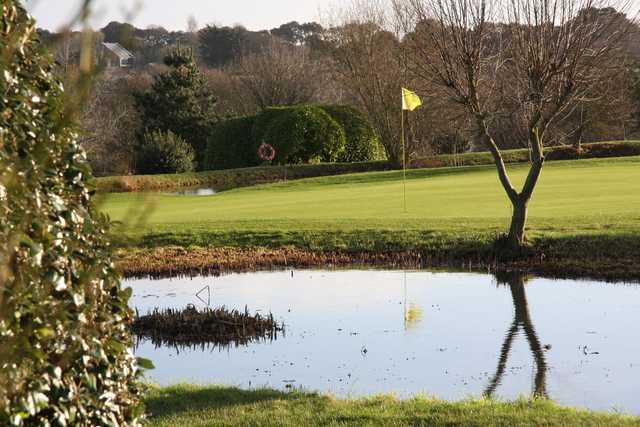View of a green at Wheatlands Golf Course