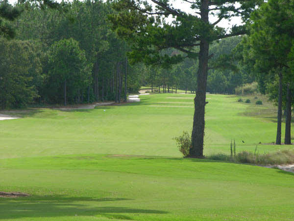 A view of a fairway at Pine Dunes Resort and Golf Club