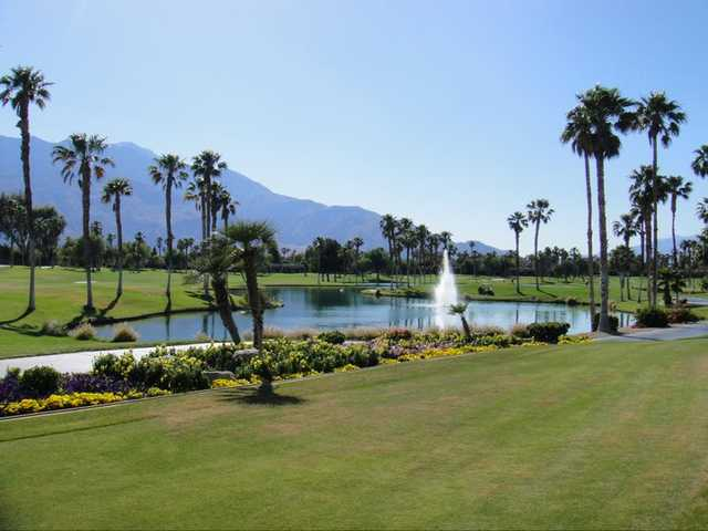 A view from Desert Princess Country Club