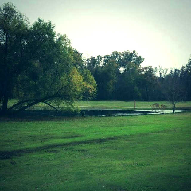 A view from Indian Shores Golf Course