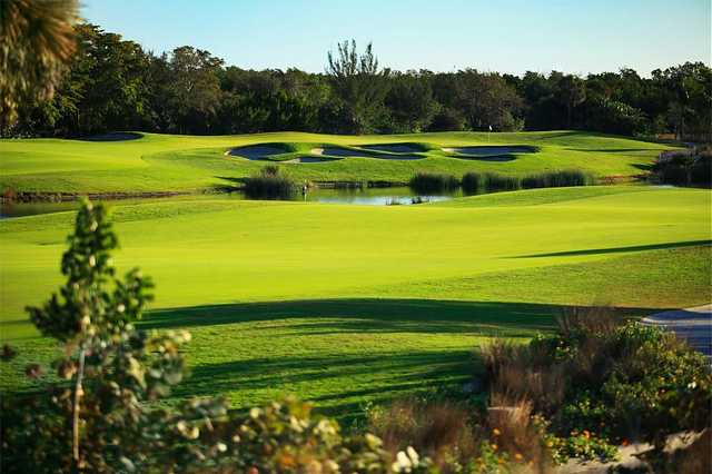 View of a green at Hammock Bay Golf Course