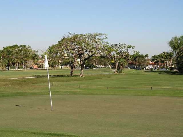 A view of a green at Granada Golf Course (City of Coral Gables)