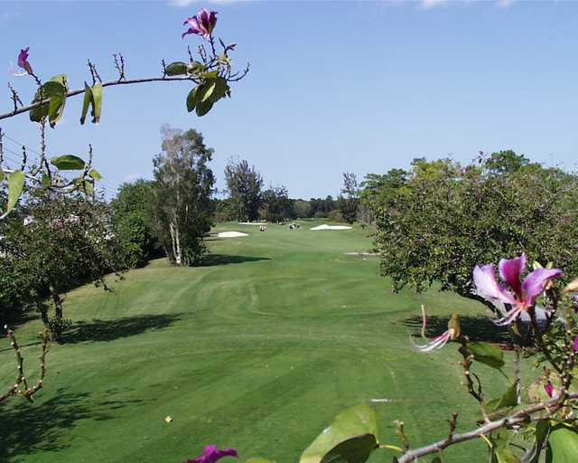 A view from a tee from The Links At Boynton Beach