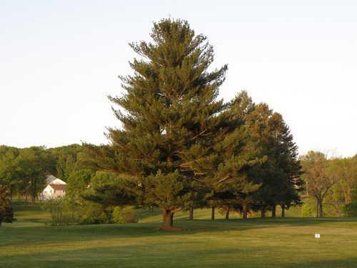 A view from Blue at Limekiln Golf Course (GolfDigest)