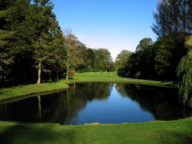 No. 6 - known as Larch Grove - is the signature hole of Lisburn Golf Club.