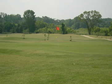 A view of a green at Links of Madison County Golf & Country Club (Lindsey Management)