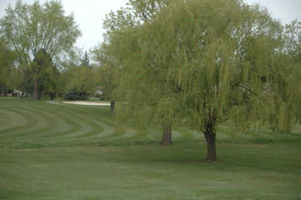 A view of a fairway at Idyl Wyld Golf Course
