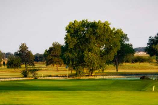 A sunny day view of a green at River Creek Park Golf Course