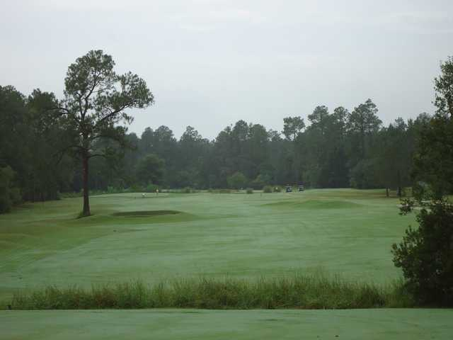A view from a tee at Abita Springs Golf & Country Club