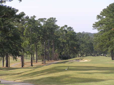 A view from the hole #10 at Forest Hills Golf Club