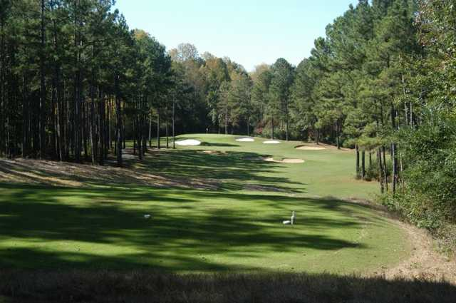 A view from a tee at Coweta Club from Arbor Springs Plantation