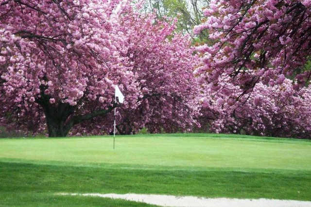 A spring view of a hole at Mountain View Golf Course