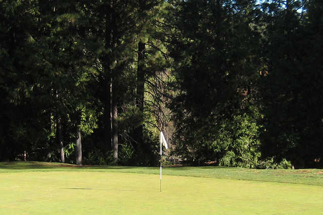 A view of a hole at Mace Meadow Golf & Country Club