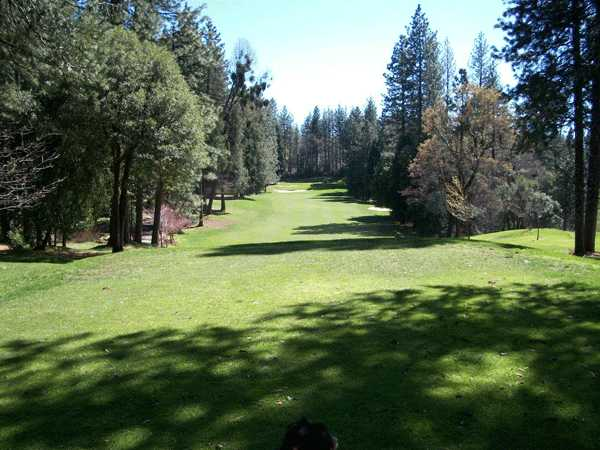 A view of a fairway at Forest Meadows Golf Course