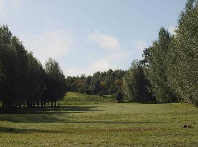 A tough dog leg tee shot at Brierley Forest Golf Club