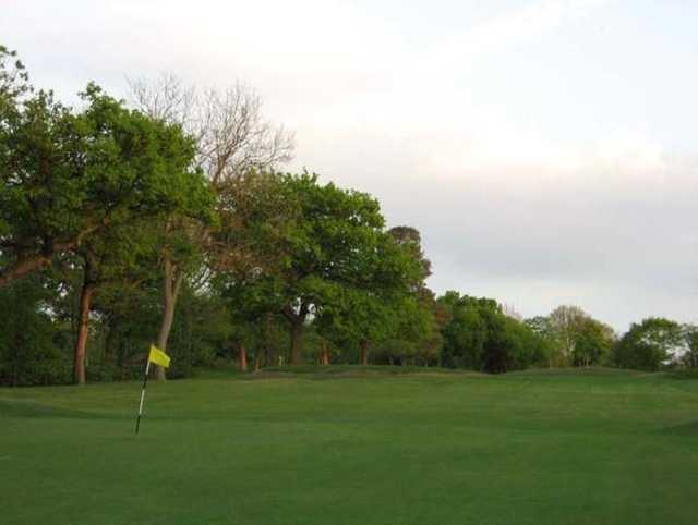 A view of the 8th green and surrounding trees at Cheadle Golf Club