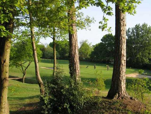 A view through the trees of Cheadle Golf Club
