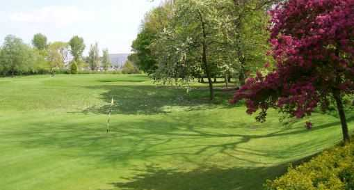 Green and surrounds at Allestree Park Golf Course