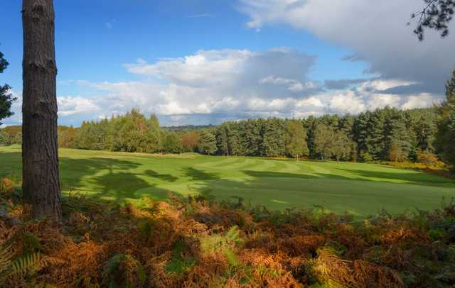 A look over the 16th green at Tilgate Forest Golf Centre.