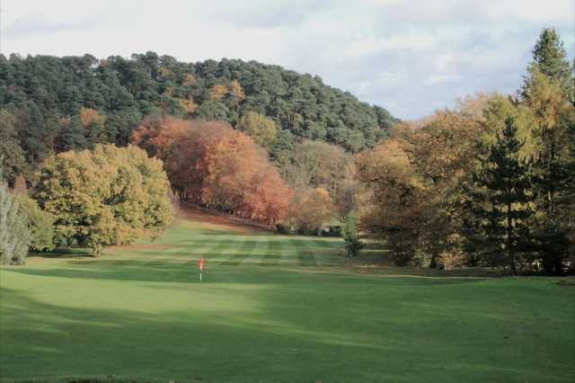 A forest lined fairway at the Lickey Hills Golf Club