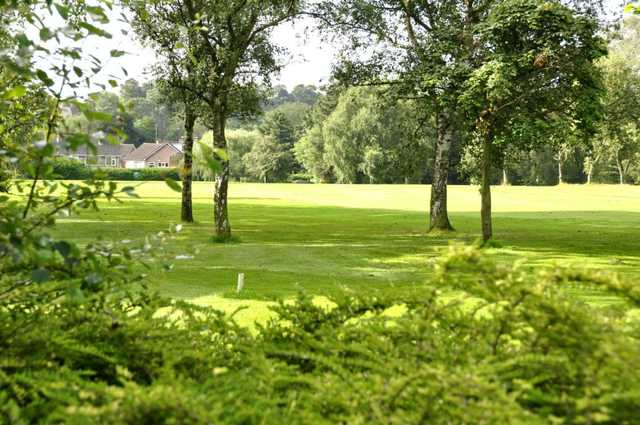 View through trees at Pype Hayes Golf Club