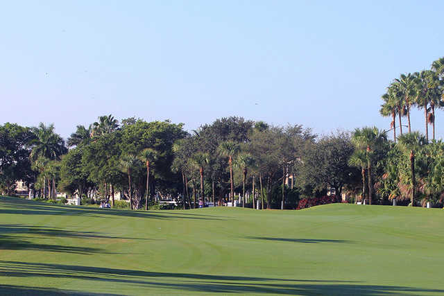 A view of a fairway at Royal Palm Yacht & Country Club