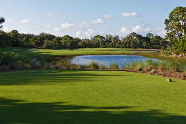 A view from a tee at Collier's Reserve Country Club
