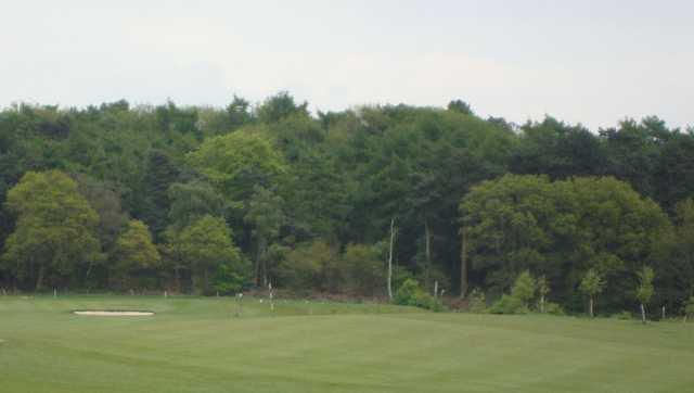 Greenside scenery at Halfpenny Green Golf Club