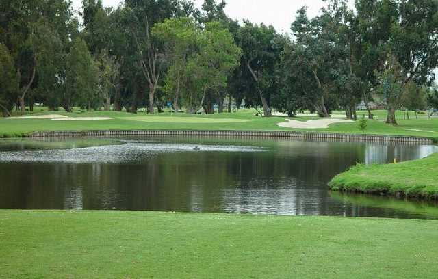 A view of a green with water in foreground at Corica Park.